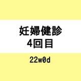 【妊婦健診4回目 / 22w0d】性別判明