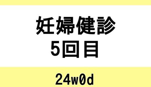 【妊婦健診5回目 / 24w0d】体重を指摘(便秘解消の漢方)・麻しん抗体検査