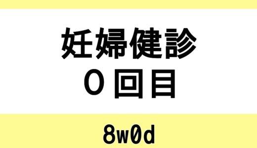 【妊婦健診0回目 / 8w0d】地元の産婦人科へ行く