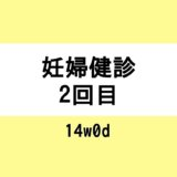 【妊婦健診2回目 / 14w0d】乳首マッサージ