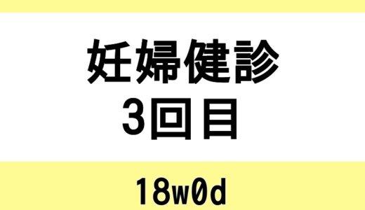 【妊婦健診3回目 / 18w0d】特に問題なし、という安心