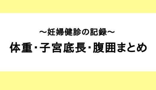 【妊婦健診】体重・子宮底長・腹囲まとめ(便秘で体重を指摘される)