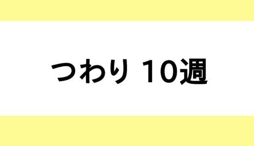 【つわり / 妊娠10週】料理が苦痛・多動力