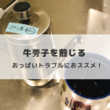 牛蒡子(ごぼうし、ごぼう茶)の煎じ方紹介!授乳中は毎日煎じてました