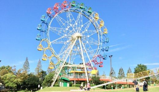 【愛知県安城市】堀内公園でハイハイレースに参加しました!